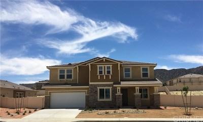 Palmdale Single Family Home For Sale: 7018 Hartford Lane