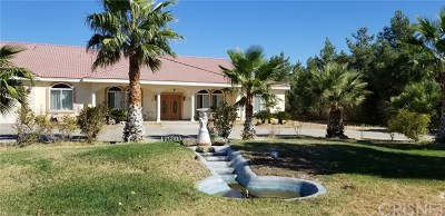 Lancaster, Palmdale Single Family Home For Sale: 4023 Equestrian Way