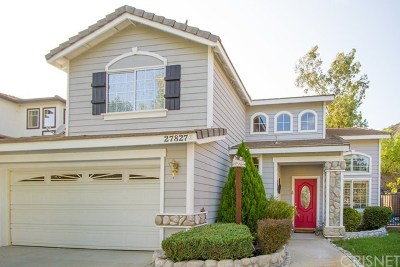 Castaic Single Family Home For Sale: 27827 Villa Canyon Road