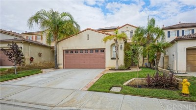 Castaic Single Family Home For Sale: 27669 Elk Ridge Road