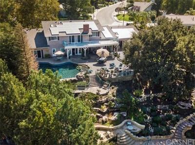 Acton, Canyon Country, Castaic, Newhall, Saugus, Stevenson Ranch, Valencia, Agua Dulce, Santa Clarita Single Family Home For Sale: 24137 Vista Hills Drive