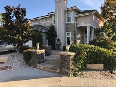Acton, Canyon Country, Castaic, Newhall, Saugus, Santa Clarita, Stevenson Ranch, Valencia, Agua Dulce Single Family Home For Sale: 25502 Wilde Avenue