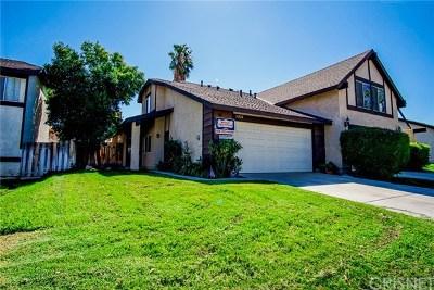 Acton, Canyon Country, Castaic, Newhall, Saugus, Santa Clarita, Stevenson Ranch, Valencia, Agua Dulce Single Family Home For Sale: 16922 Shinedale Drive