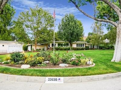 Acton, Canyon Country, Castaic, Newhall, Saugus, Santa Clarita, Stevenson Ranch, Valencia, Agua Dulce Single Family Home For Sale: 22639 Arriba Drive
