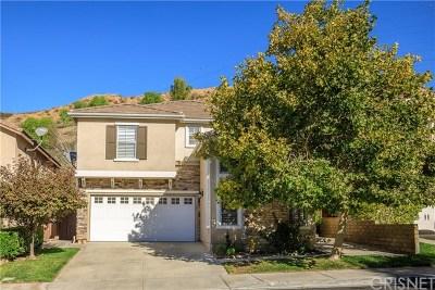 Acton, Canyon Country, Castaic, Newhall, Saugus, Santa Clarita, Stevenson Ranch, Valencia, Agua Dulce Single Family Home For Sale: 28667 Silverking Trail