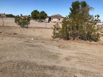 Phelan Residential Lots & Land For Sale: 4598 Cholame Road
