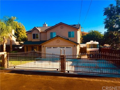 Castaic Single Family Home For Sale: 29752 Silver Street