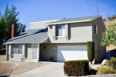 Pacoima Single Family Home For Sale: 10541 De Haven Avenue