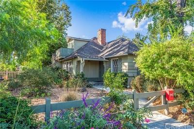 Valley Glen Single Family Home For Sale: 6557 Costello Avenue