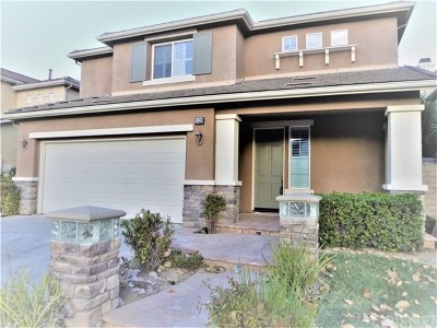 Saugus Single Family Home For Sale: 28310 Stansfield Lane