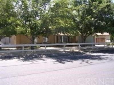 Lake Los Angeles Single Family Home For Sale: 40214 167th Street E