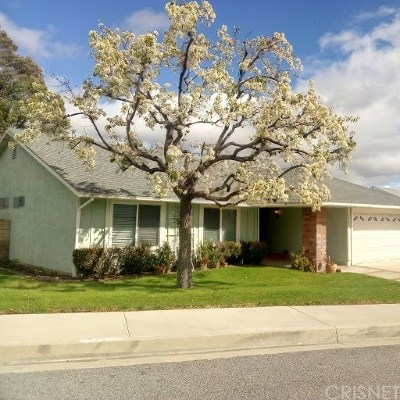 Valencia Single Family Home For Sale: 23047 Garzota Drive