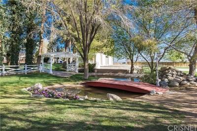 Lancaster, Palmdale Single Family Home For Sale: 6614 E Avenue K