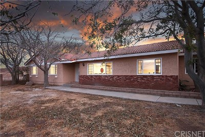 Leona Valley Single Family Home For Sale: 39240 Bouquet Canyon Road