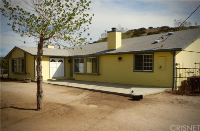 Acton, Canyon Country, Saugus, Santa Clarita, Castaic, Stevenson Ranch, Newhall, Valencia, Agua Dulce Single Family Home For Sale: 34517 Peaceful Valley Road