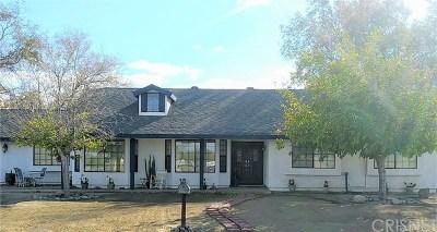 Littlerock Single Family Home For Sale: 10226 E Avenue R12