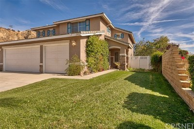 Castaic Single Family Home For Sale: 30588 Park Vista Drive
