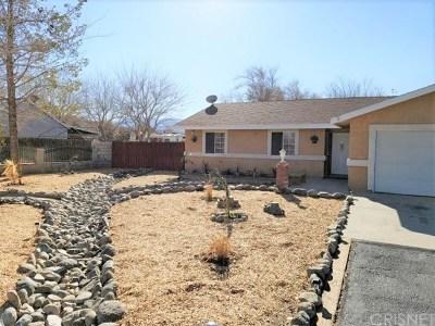 Littlerock Single Family Home For Sale: 9808 E Avenue S4 S