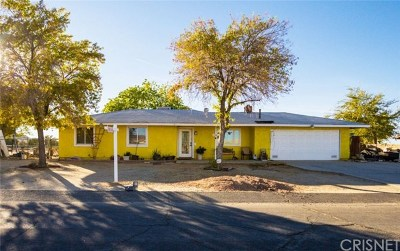 Lake Los Angeles Single Family Home For Sale: 40561 Fieldspring Street