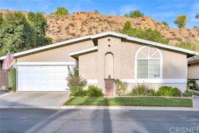 Castaic Single Family Home Active Under Contract: 32002 Quartz Lane
