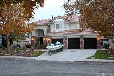 Lancaster Single Family Home For Sale: 4010 Via Constance