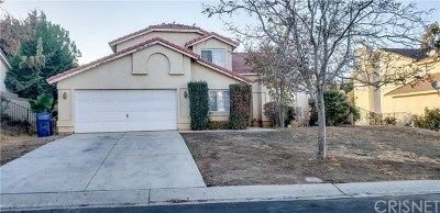 Palmdale Single Family Home For Sale: 40925 Granite Street