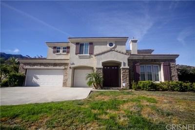 Corona Single Family Home For Sale: 23421 Calle Pepita Road