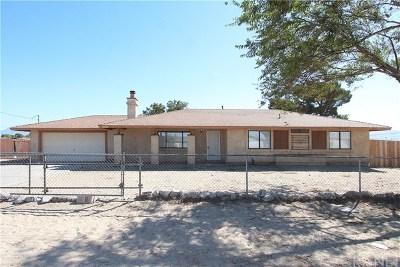 Littlerock Single Family Home For Sale: 10030 E Avenue R2