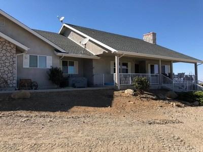 Juniper Hills Single Family Home For Sale: 11711 Honeybee Lane