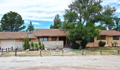 Saugus Single Family Home For Sale: 29455 Luzon Drive