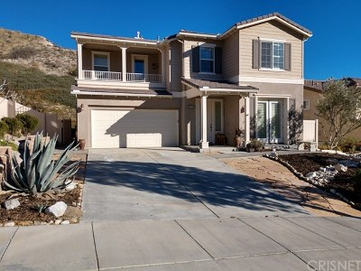 Canyon Country Single Family Home For Sale: 29420 Gary Drive