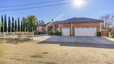 Palmdale Single Family Home For Sale: 36411 Harold 2nd Street