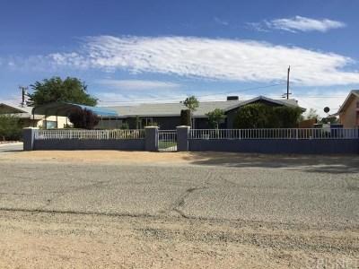California City Single Family Home For Sale: 9300 California City Boulevard