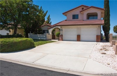 Victorville Single Family Home For Sale: 14067 Driftwood Drive