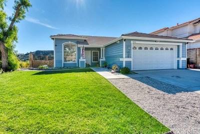 Castaic Single Family Home For Sale: 28004 Rainier Road