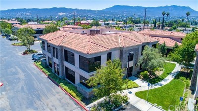 Ventura County Commercial For Sale: 3205 Old Conejo Road #20