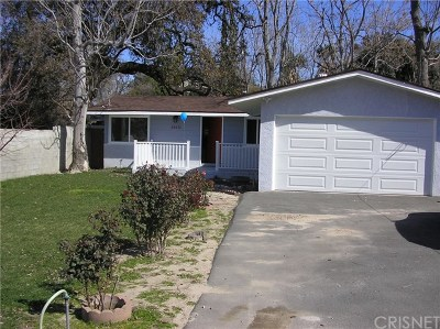 Acton, Canyon Country, Saugus, Santa Clarita, Castaic, Stevenson Ranch, Newhall, Valencia, Agua Dulce Single Family Home For Sale: 25030 De Wolfe Road