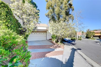 Calabasas Single Family Home For Sale: 4529 Park Cordero