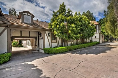 Hidden Hills Single Family Home For Sale: 5544 Hoback Glen Road