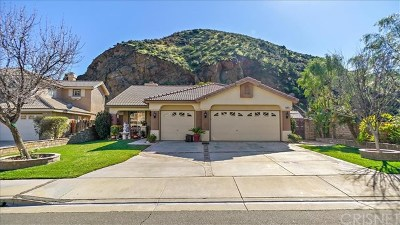 Castaic Single Family Home For Sale: 28672 Oak Valley Road