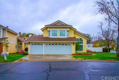 Acton, Canyon Country, Castaic, Newhall, Saugus, Stevenson Ranch, Valencia, Agua Dulce, Santa Clarita Single Family Home For Sale: 26804 Hummingbird Circle