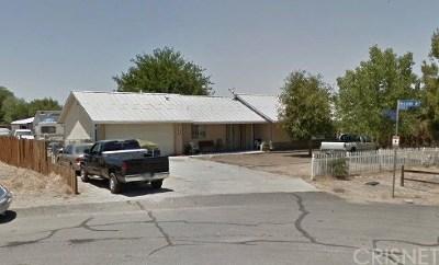 Lake Los Angeles Single Family Home For Sale: 41133 176th Street E