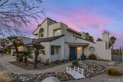 Lancaster, Palmdale, Quartz Hill Single Family Home For Sale: 41124 Oakview Lane
