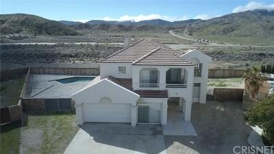 Lancaster, Palmdale, Quartz Hill Single Family Home For Sale: 38704 Elder Creek Court