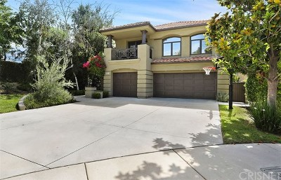 Calabasas Single Family Home For Sale: 23185 Park Blanco
