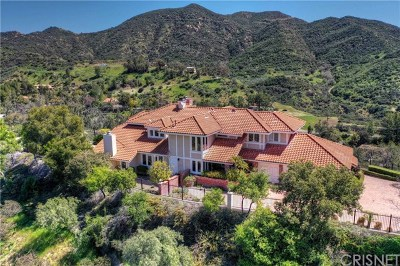 Brentwood, Calabasas, West Hills, Woodland Hills Single Family Home For Sale: 2575 Hierro Way