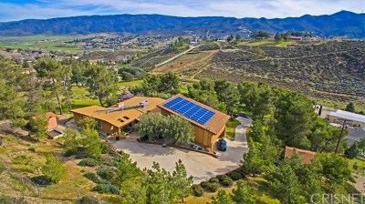 Leona Valley Single Family Home For Sale: 9235 Northside Drive