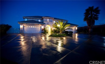 Palmdale Single Family Home For Sale: 40908 Rise Court