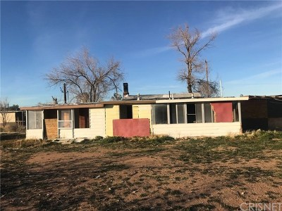 Apple Valley Single Family Home For Sale: 21849 Waalew Road