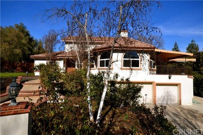 Agoura Hills Single Family Home For Sale: 28925 Wagon Road